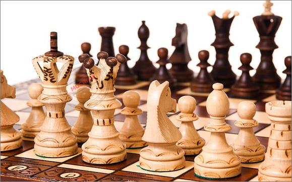 Почему шахматы являются спортом